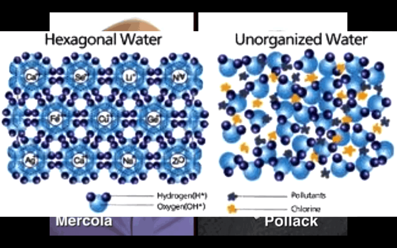 Structured Water by Dr. Mercola & Dr. Pollack